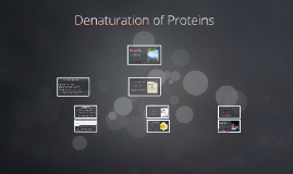 Copy of Denaturation of a Protein   Experiment