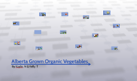 Alberta Grown Organic Vegetables