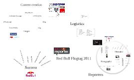 Red Bull Reporter Brief