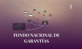 FONDO NACIONAL DE GARANTÍAS