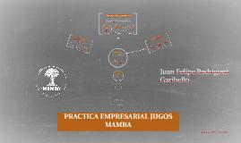 PRACTICA EMPRESARIAL JUGOS MAMBA