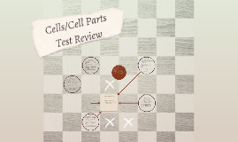 Cell Parts/Cells Review