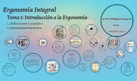 Ergonomia Integral