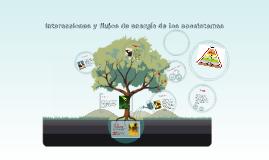 Copy of interacciones y flujos de energia de los ecosistemas
