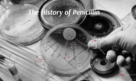The History of Penicillin