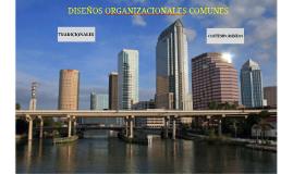 Modelo Diseños Organizaciones