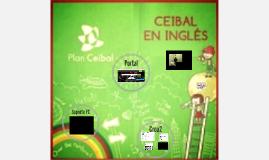 Presentación CEI reunión de equipo