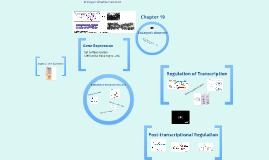 Teri M Eukaryotic Genome