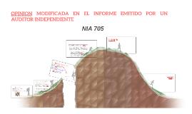 OPINION MODIFICADA EN EL INFORME EMITIDO POR UN AUDITOR INDE