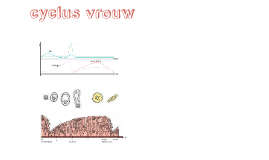 hormonale cyclus - eierstokcyclys - baarmoedercyclus