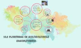 Copy of 10.5 Pluriforme en multiculturele samenlevingen