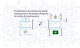 Fundamentos do sistema de gestão empresariais e do sistema d