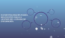 ELEMENTOS DISCIPLINARES RELEVANTES PARA LA GESTIÓN DEL CUIDA