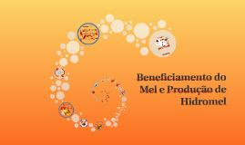 Copy of Mel e Hidromel