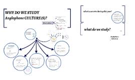 VA WHY DO WE STUDY CULTURE(S)?