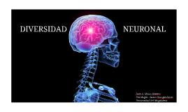 Diversidad Neuronal