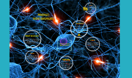 Copy of neurotrasmisores