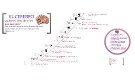 Copy of Línea de Tiempo de la Evolución del Estudio del Cerebro