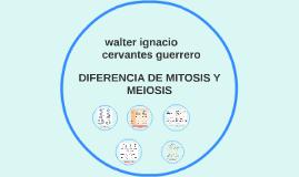 DIFERENCIA DE MITOSIS Y MEIOSIS