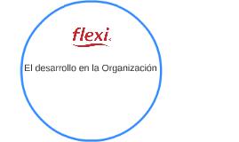 El desarrollo en la Organización