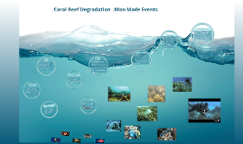 Copy of Coral Reef Degradation