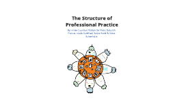 The Structure of Professional Practice
