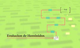 Evolucion de Hominidos