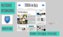TEREBA DE BALÓ