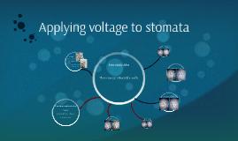 Applying voltage to stomato
