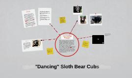 Dancing Sloth Bear Cubs