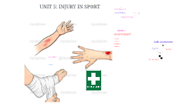 UNIT 5: INJURY IN SPORT