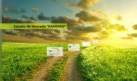 """Estudio de Mercado """"KANKADO"""""""
