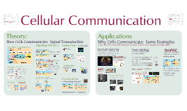 Communication 1: Cellular Communication