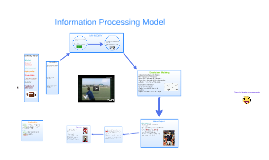The Information Processing of: