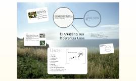 El Arrayán y sus Diferentes Usos