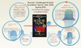 Copy of Banned / Challenged YA book