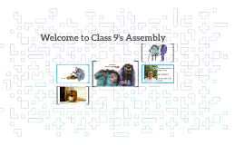 Twits Assembly