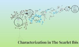 Characterization of Scarlet Ibis