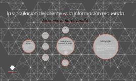 la vinculación del cliente vs la información requerida