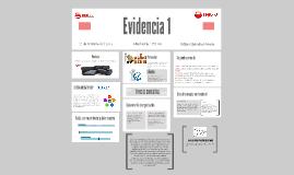 Evidencia 1