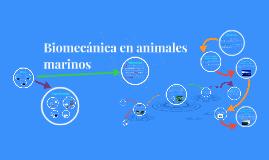 Biomecánica en animales marinos