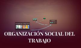 ORGANIZACIÓN SOCIAL DEL TRABAJO