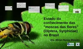 """Estado do conhecimento das """"moscas das flores"""""""