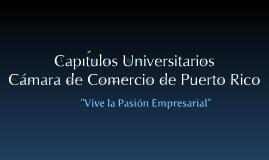 ComitéCapítulosUniversitarios2010-2011