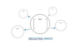 REGISTRO UNICO