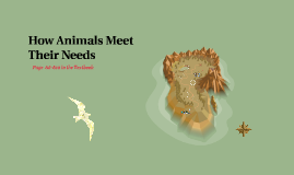 How Animals Meet Thier Needs