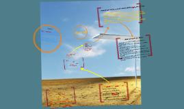 Copy of NGO's & Development
