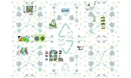 Copy of PROGRAMAS AMBIENTALES