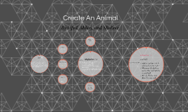 Create An Animal