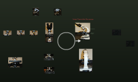 Copy of Take a Virtual Tour of the Microscope